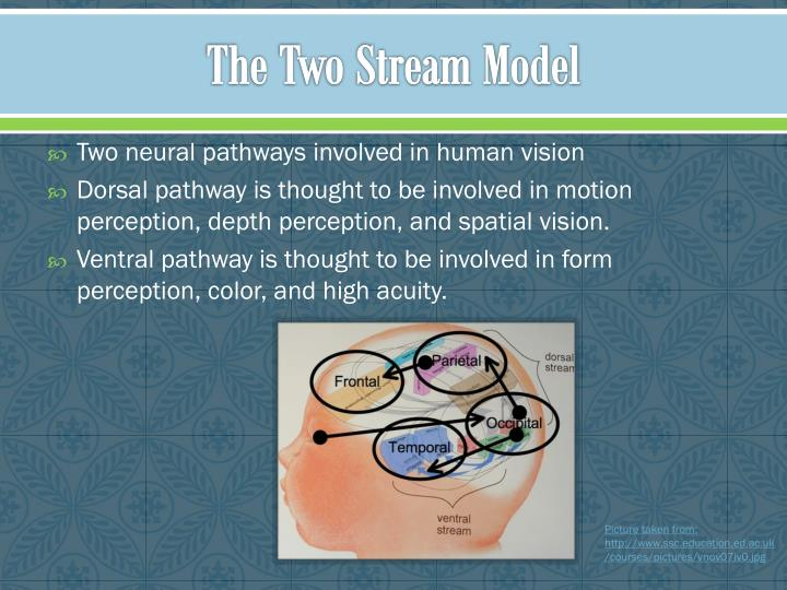 The two stream model