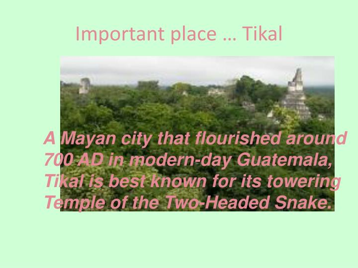 Important place … Tikal