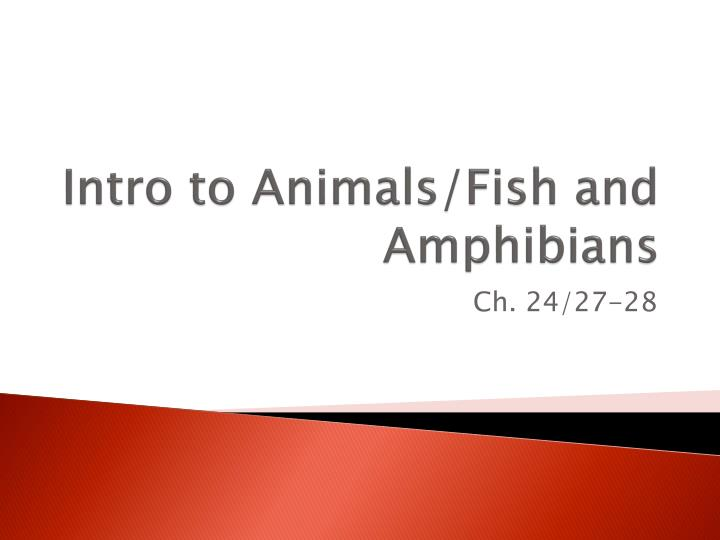intro to animals fish and amphibians n.