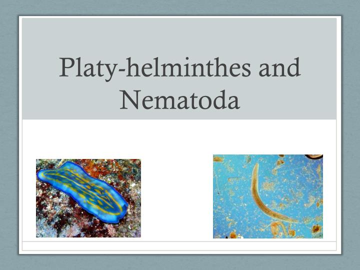 platy helminthes and nematoda n.
