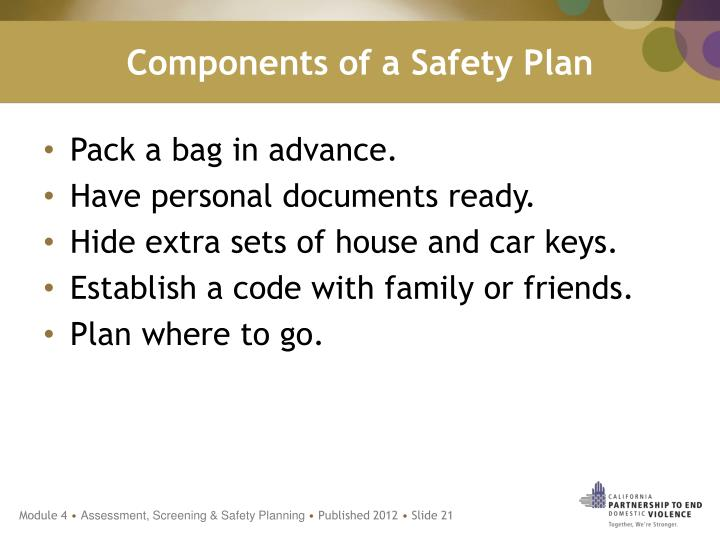 Components of a Safety Plan