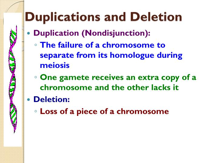 Duplications and Deletion