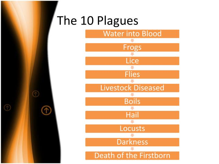 The 10 plagues1