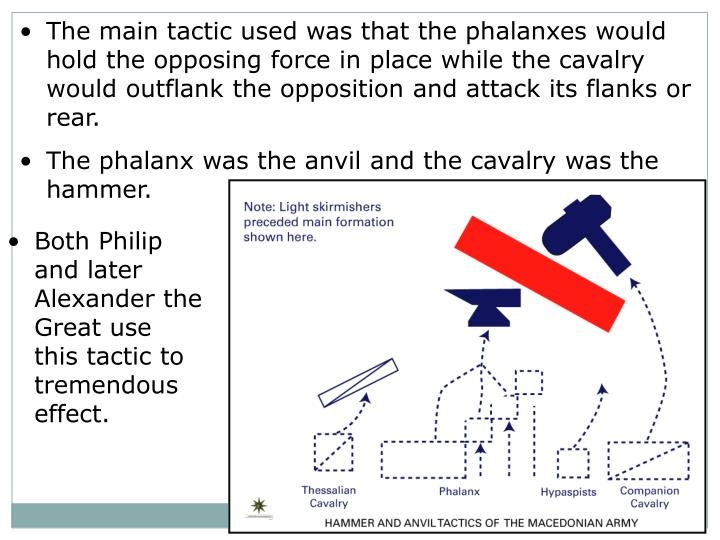 The main tactic used was that the phalanxes would hold the opposing force in place while the cavalry would outflank the opposition and attack its flanks or rear.