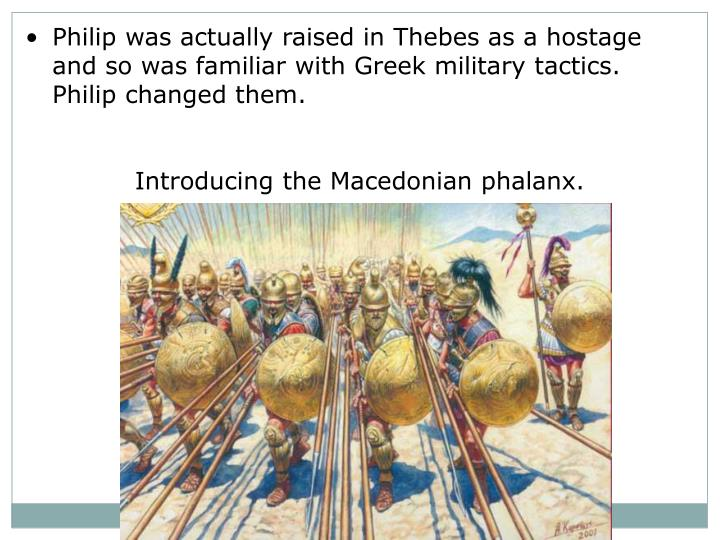 Philip was actually raised in Thebes as a hostage and so was familiar with Greek military tactics.  ...