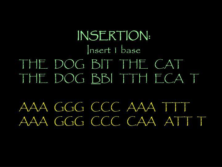 INSERTION: