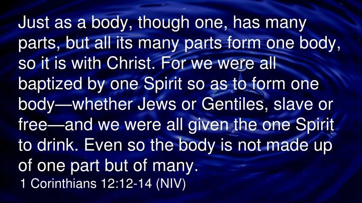Just as a body, though one, has many parts, but all its many parts form one body, so it is with Christ. For we were all baptized by one Spirit so as to form one body—whether Jews or Gentiles, slave or free—and we were all given the one Spirit to drink. Even so the body is not made up of one part but of many
