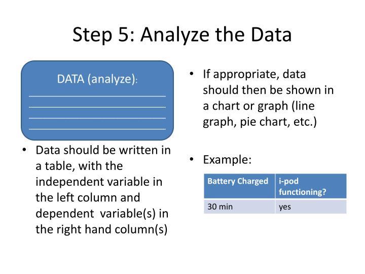 Step 5: Analyze the Data