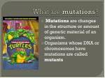 what are mutations