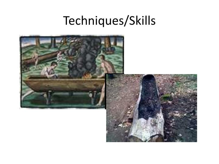 Techniques/Skills