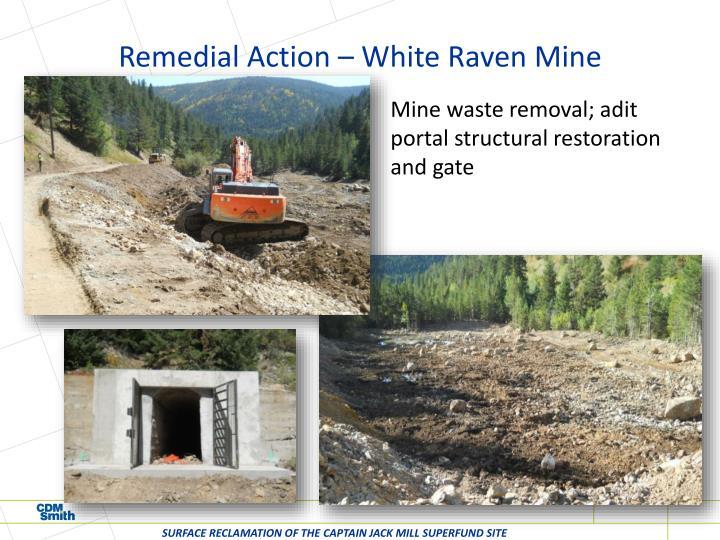 Remedial Action – White Raven Mine
