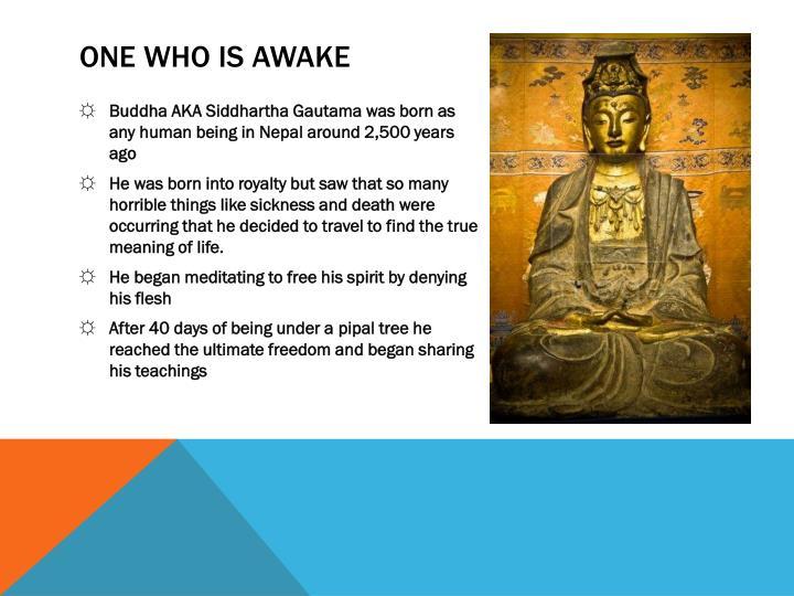 One who is awake