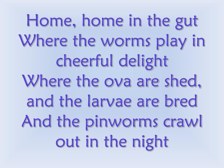 Home, home in the gut