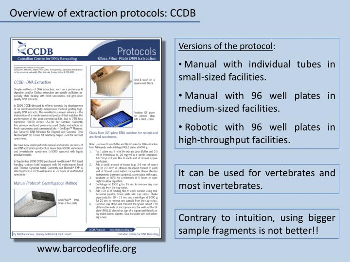 Overview of extraction