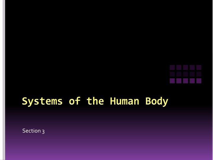 systems of the human body n.