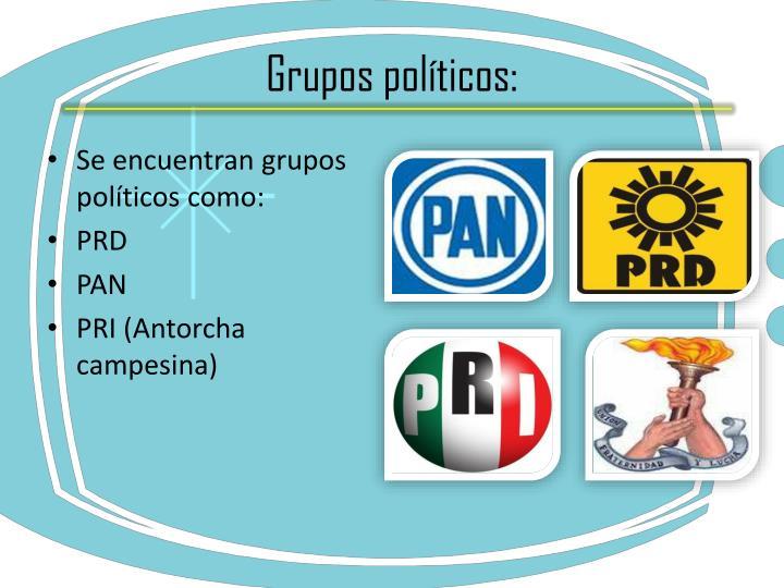 Grupos políticos: