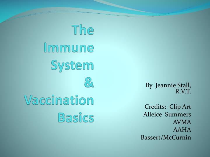 the immune system vaccination basics n.