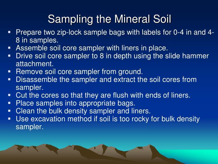 Sampling the Mineral Soil