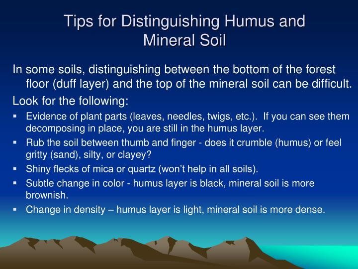 Tips for Distinguishing Humus and