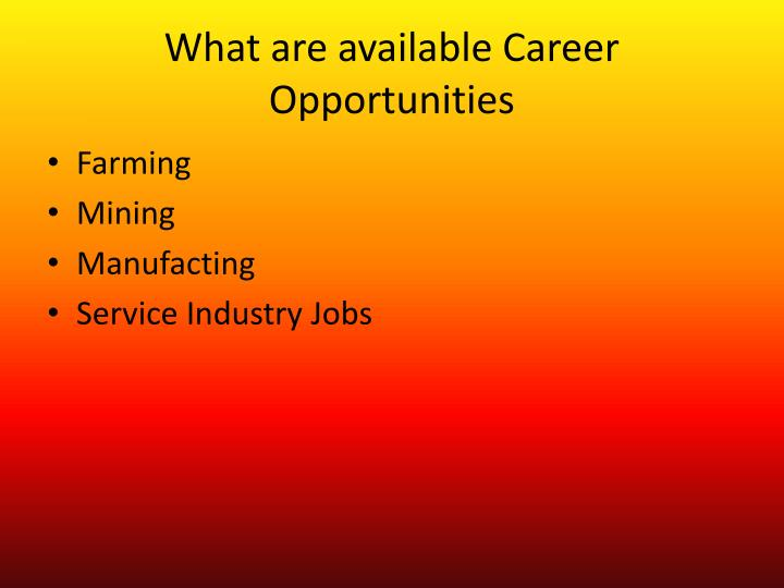 What are available Career Opportunities