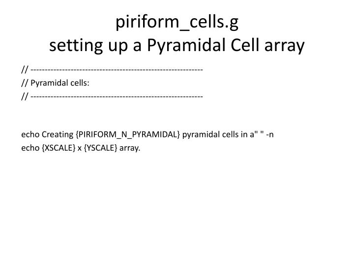piriform_cells.g