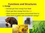 functions and structures