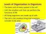 levels of organization in organisms1