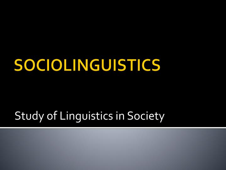 study of linguistics in society n.