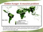 hidden hunger a m assive p roblem