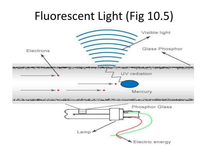 Fluorescent Light (Fig 10.5)