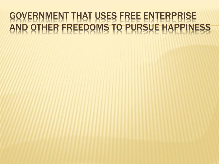 Government that uses free enterprise