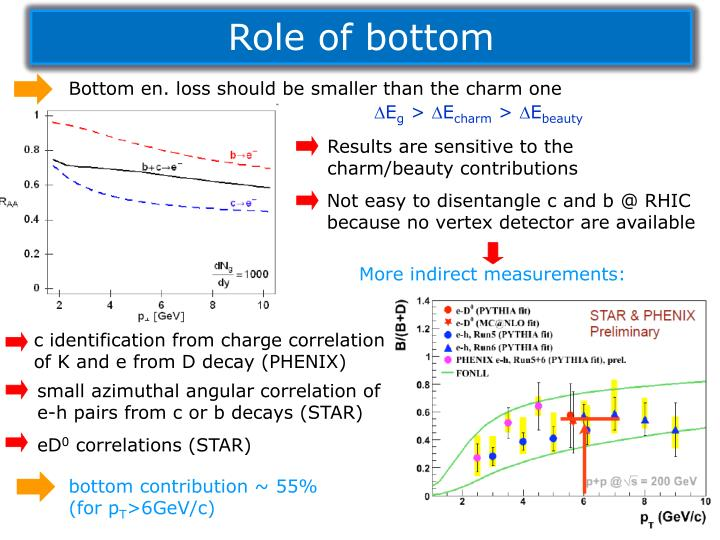 Role of bottom