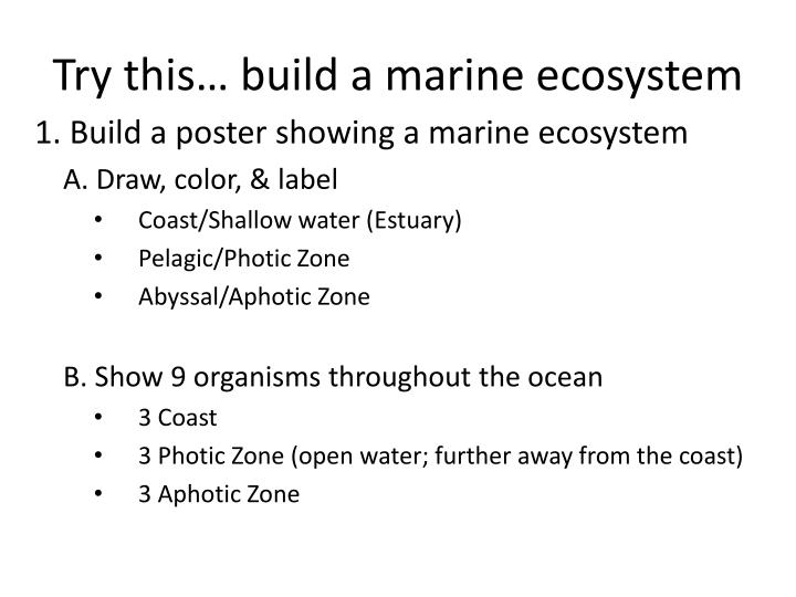 try this build a marine ecosystem n.