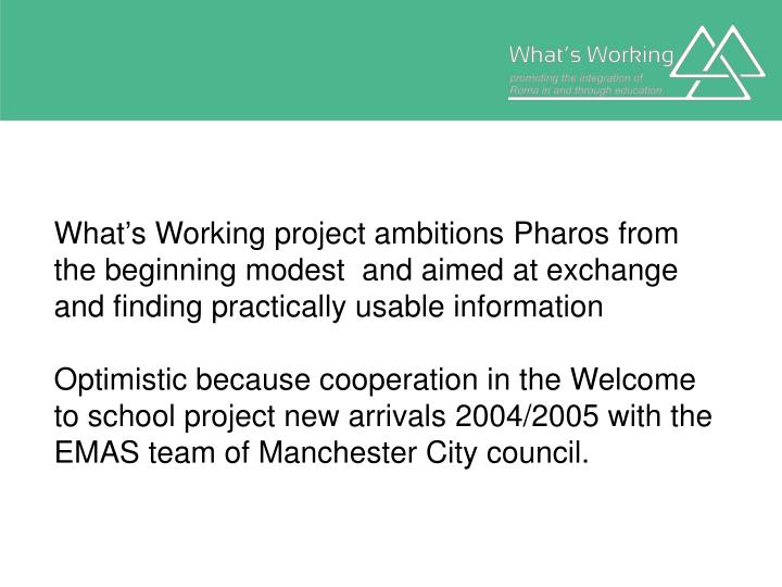 What's Working project ambitions