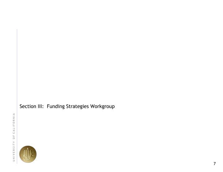 Section III:  Funding Strategies Workgroup