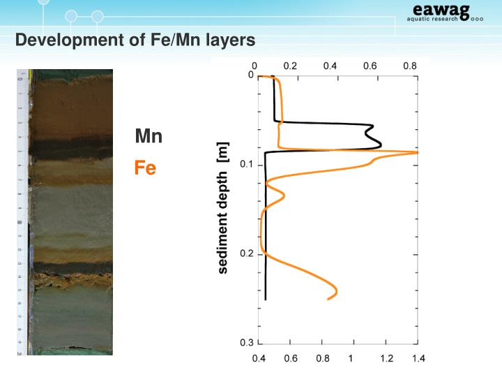Development of Fe/Mn layers