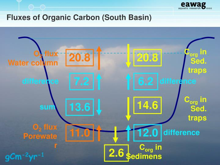 Fluxes of Organic Carbon (South Basin)