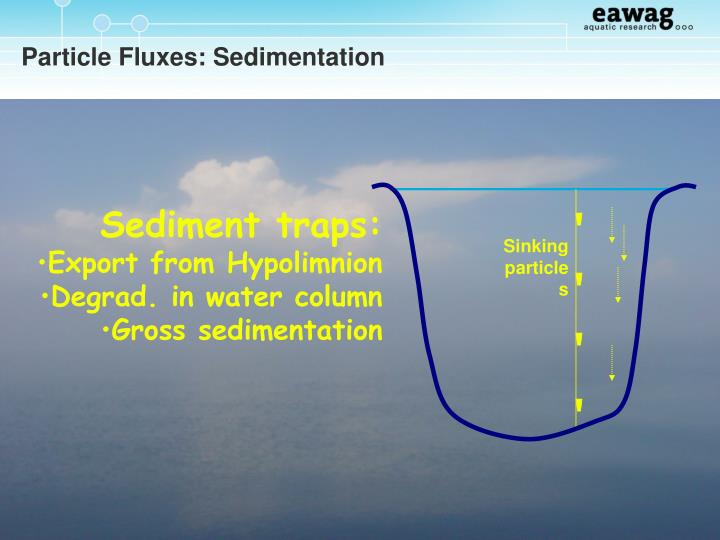 Particle Fluxes: Sedimentation