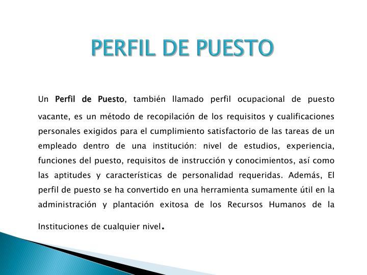 PERFIL DE PUESTO
