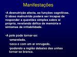 manifesta es1