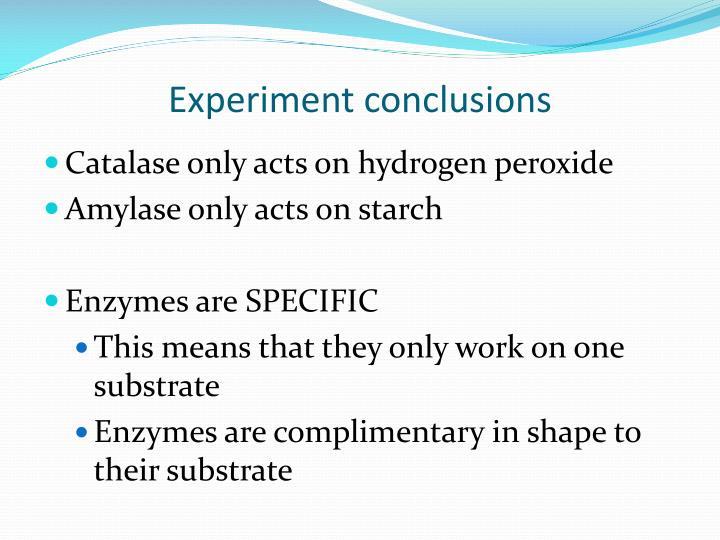 Experiment conclusions