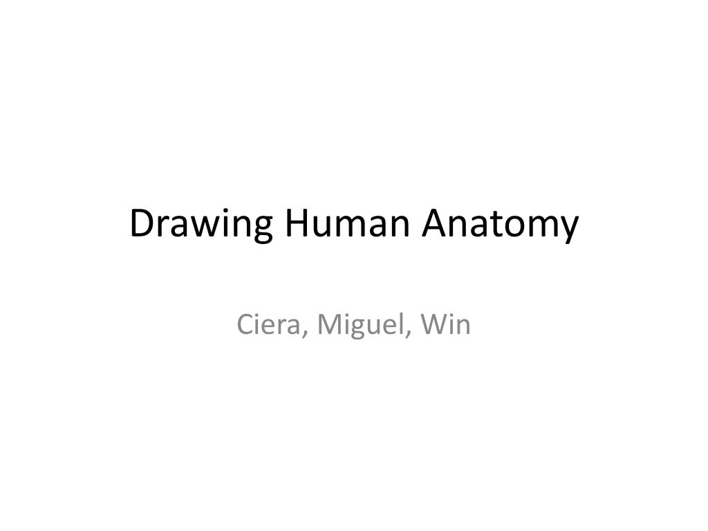 Ppt Drawing Human Anatomy Powerpoint Presentation Id1936315