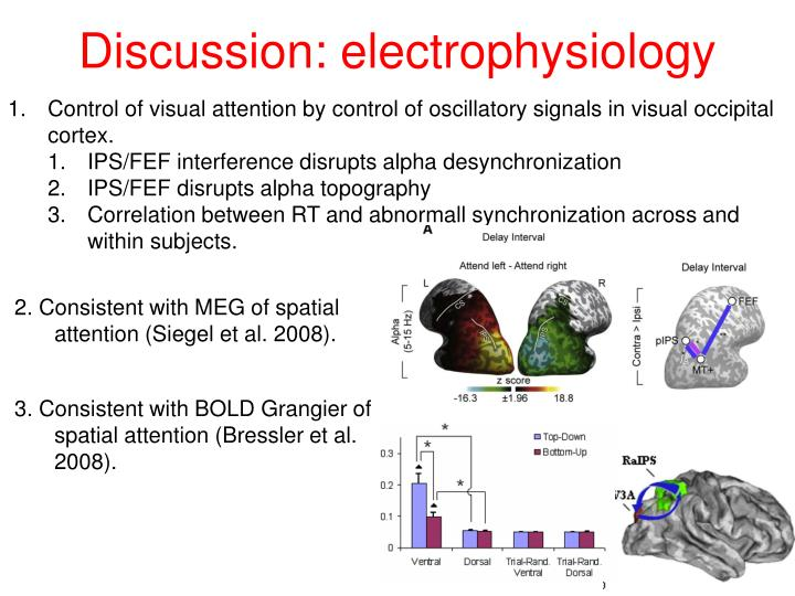 Discussion: electrophysiology