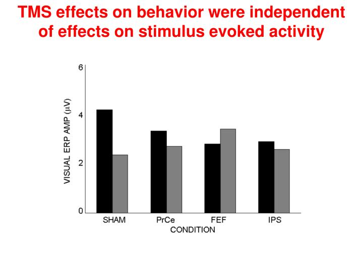 TMS effects on behavior were independent of effects on stimulus evoked activity