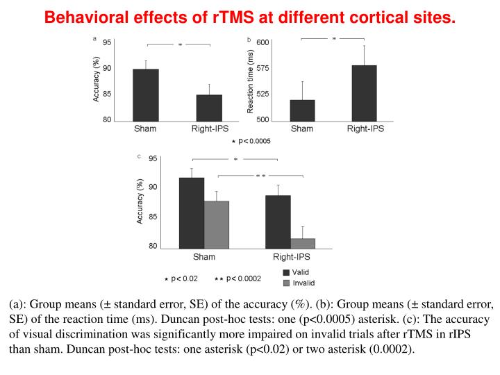 Behavioral effects of rTMS at different cortical sites.