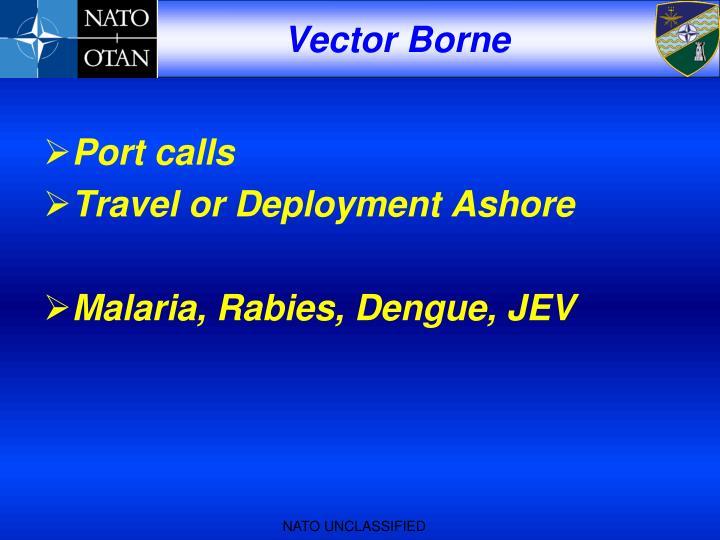 Vector Borne