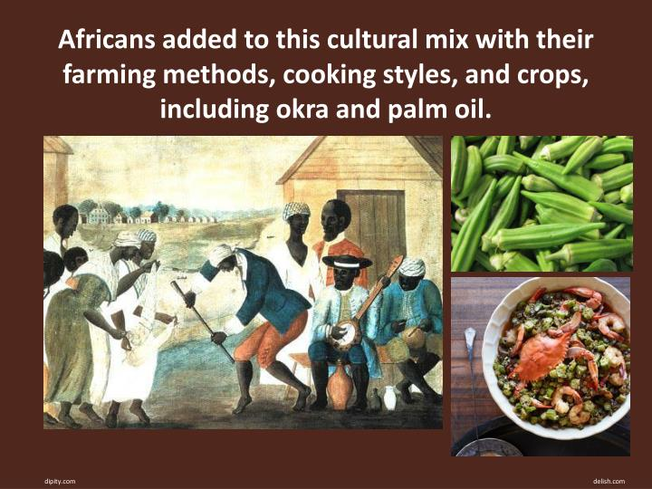 Africans added to this cultural mix with their farming methods, cooking styles, and crops, including okra and palm oil.