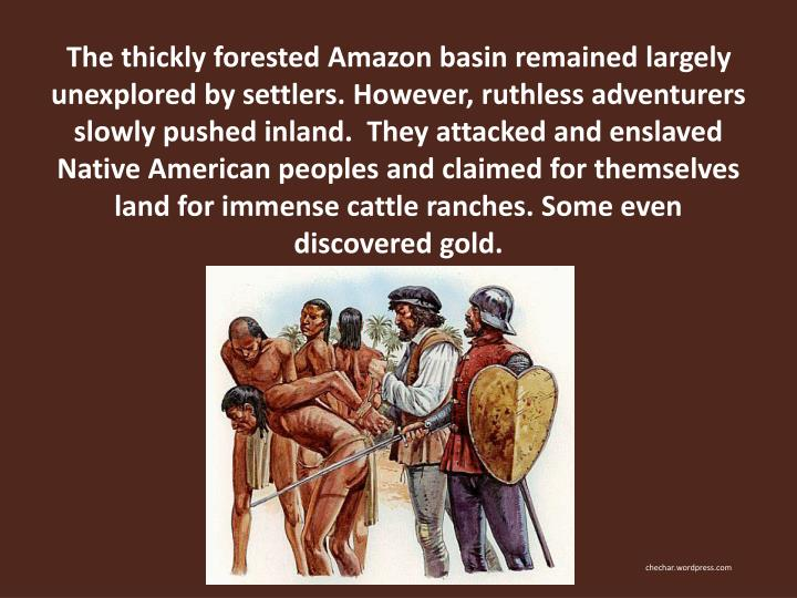 The thickly forested Amazon basin remained largely unexplored by settlers. However, ruthless adventurers slowly pushed inland.  They attacked and enslaved Native American peoples and claimed for themselves land for immense cattle ranches. Some even discovered gold.