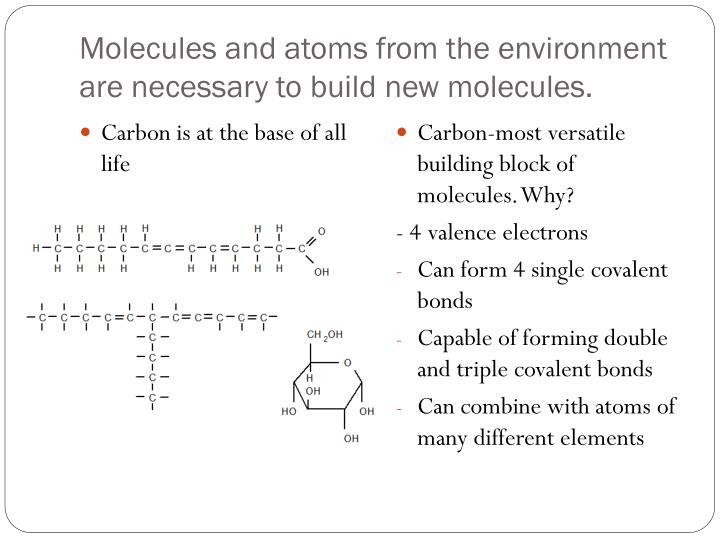 Molecules and atoms from the environment are necessary to build new molecules.