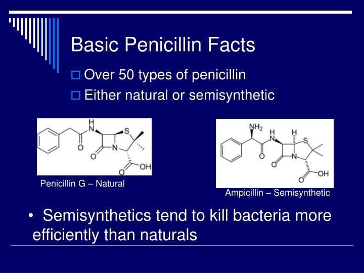 Basic Penicillin Facts
